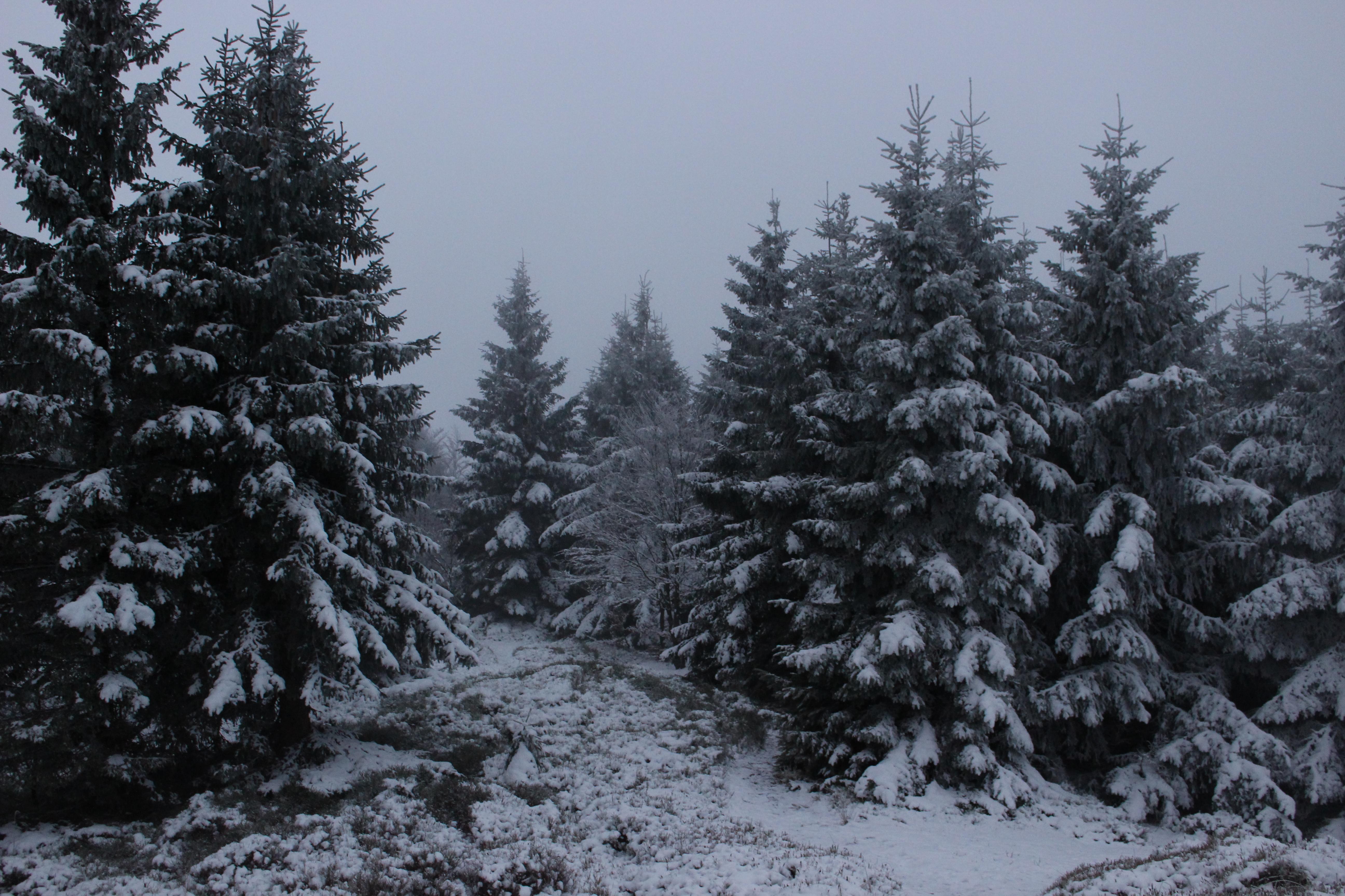 Korona Gór Polski zdobywanie szczytu zimą