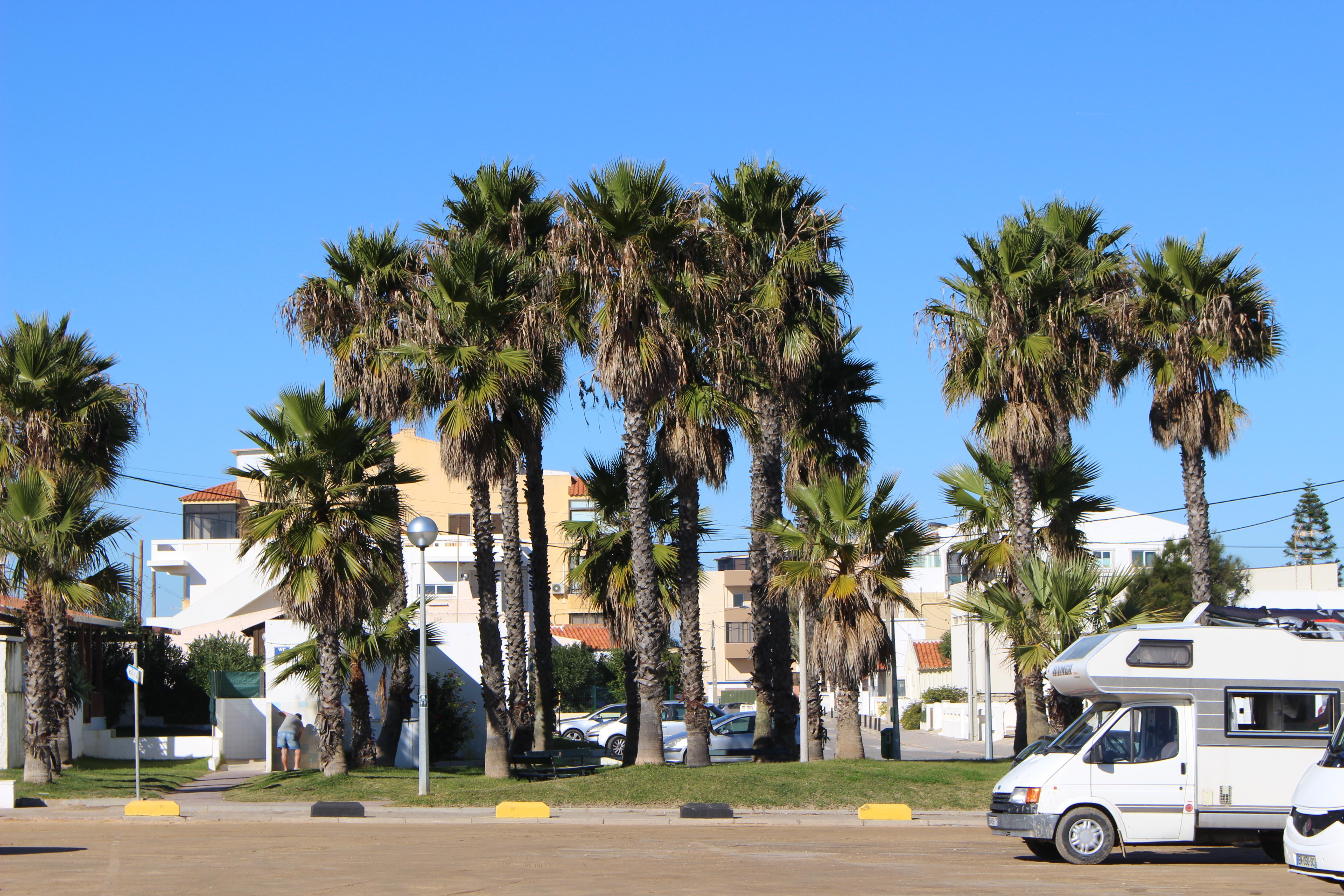 Faro port