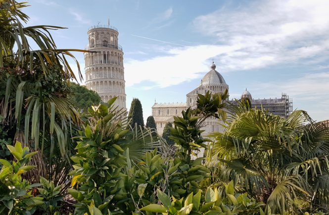wieża w tropikach