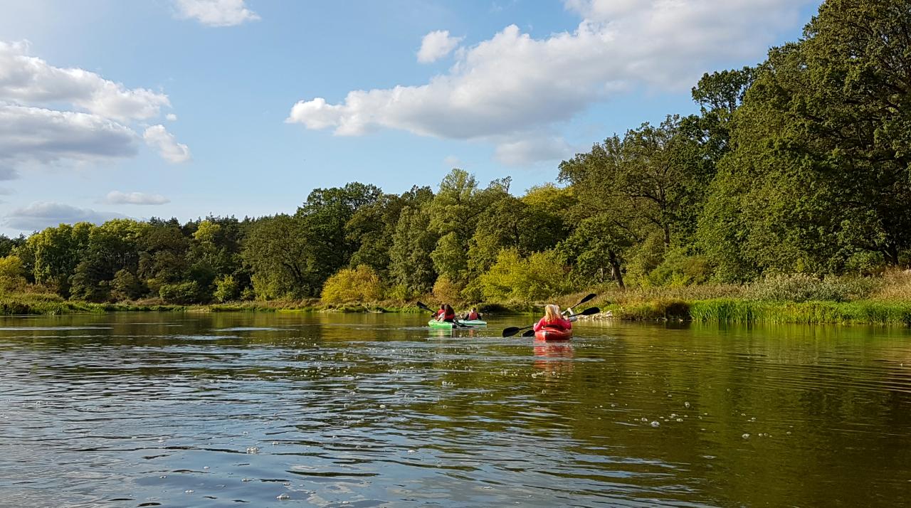 Koryto . rzeki jest bardzo szerokie na tym 10 km fragmencie