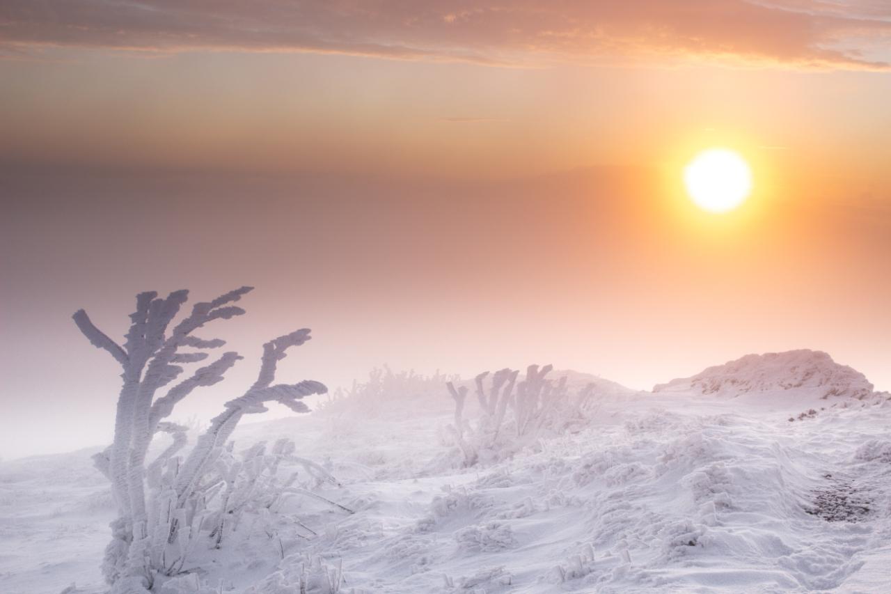 Wschód słońca 6.01.2020 - Chatka Puchatka