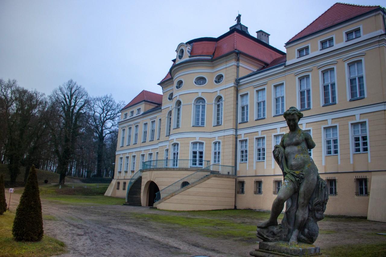 Pałac w Rogalinie - symetryczny ogród w stylu francuskim
