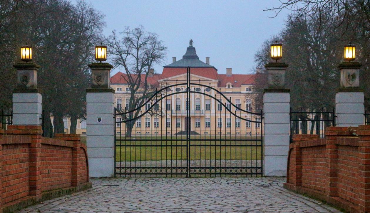 Wejście do Pałacu w Rogalinie
