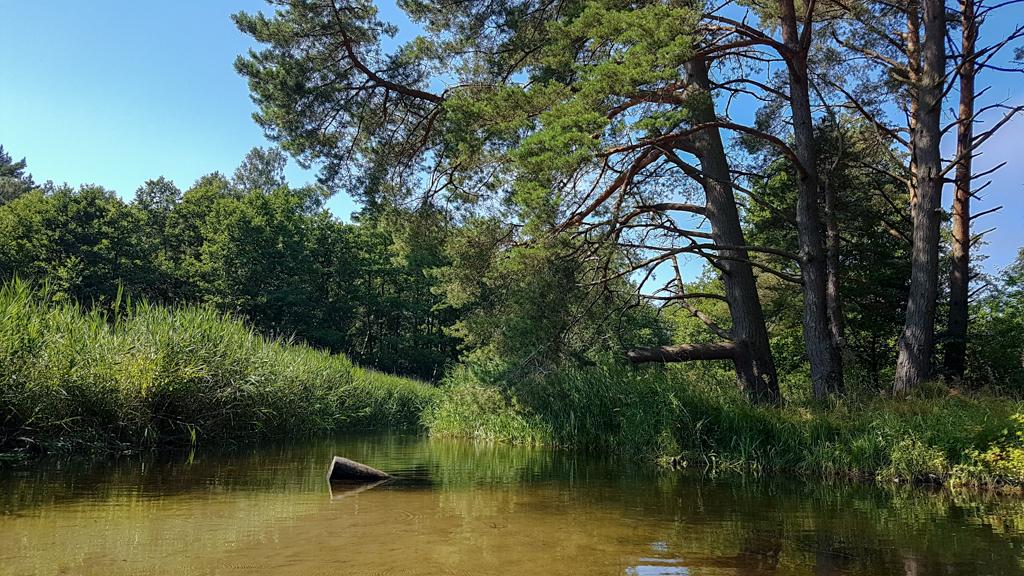 Trasa - Spływ kajakowy Piaśnicą