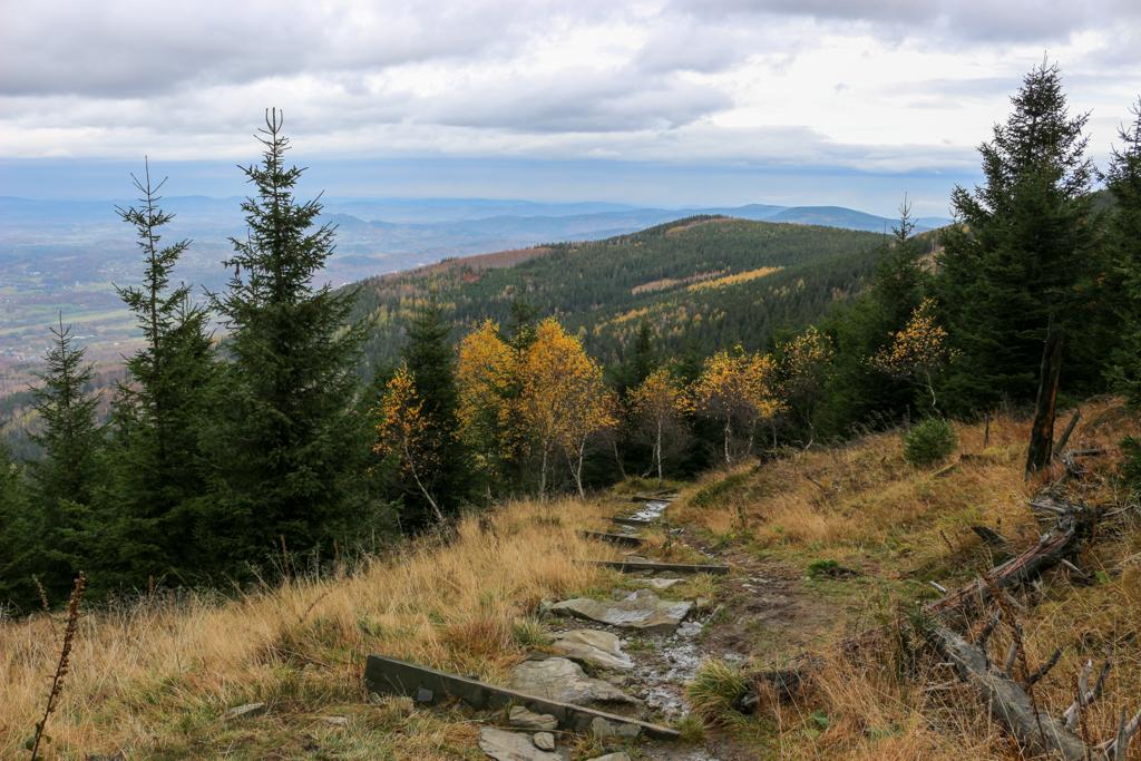 Zejście ze Skalnego Stołu żółtym szlakiem.